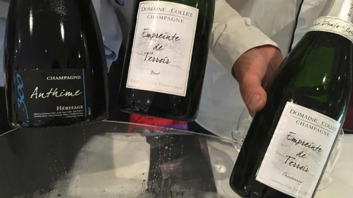 Les clés du vin : Champagne : le goût du terroir